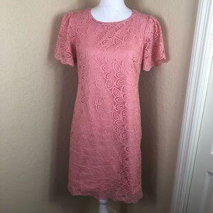 Euc Ann Taylor Loft lace dusty pink sheath dress